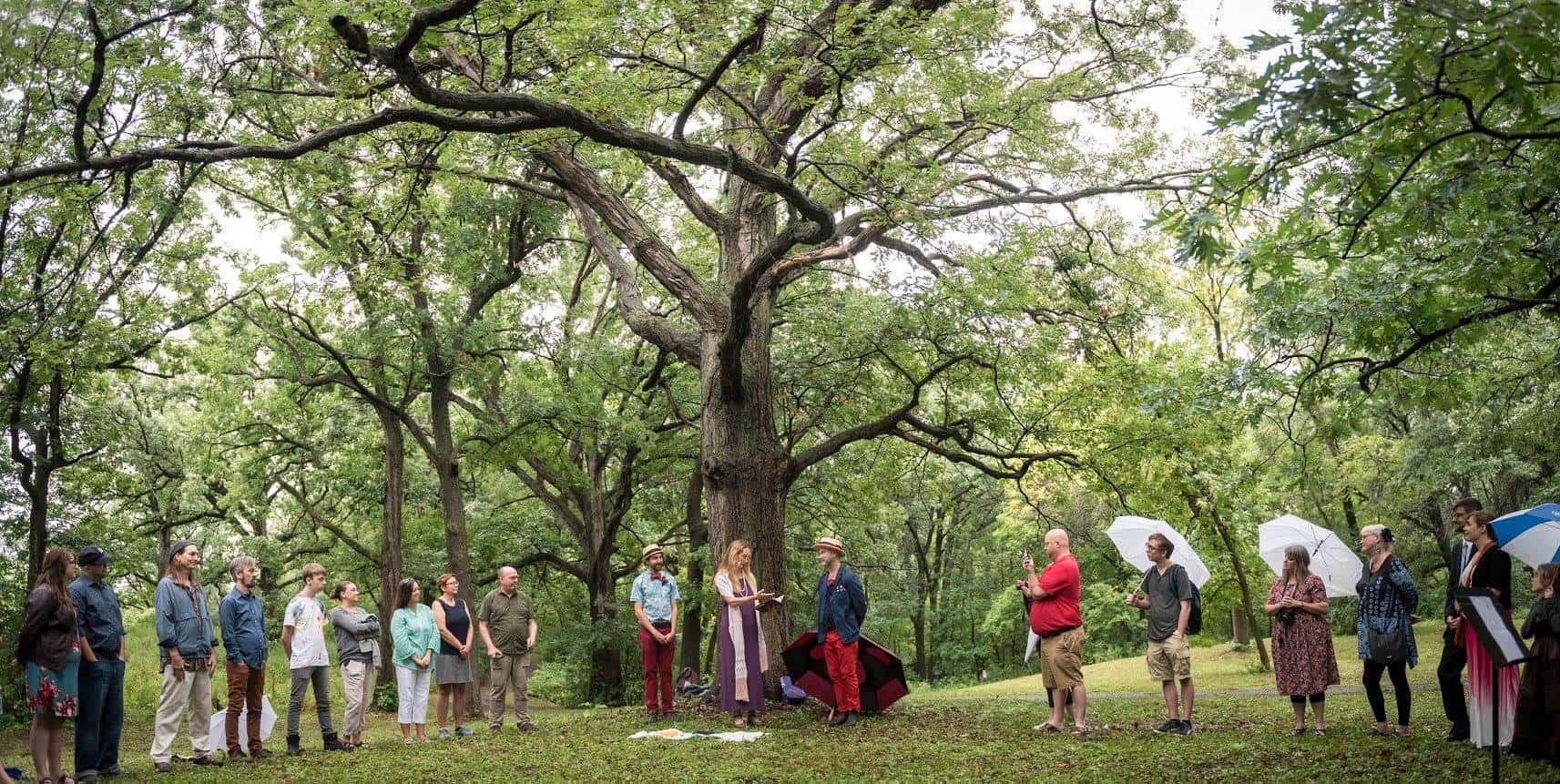 Our wedding circle under an oak tree.