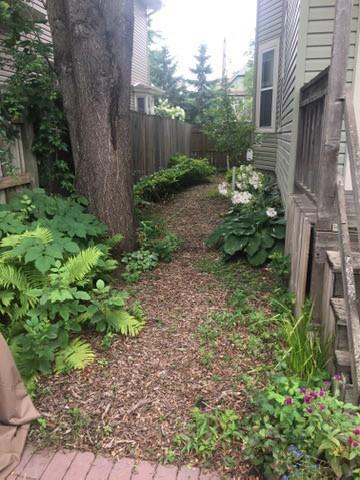 Our side garden.